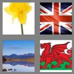 4 pics 1 word 5 letters wales