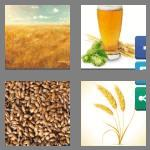 4 Pics 1 Word 6 letters Answers【2020】All Answers 🥇Quick Search