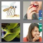 4 pics 1 word 6 letters biters