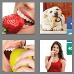 4 pics 1 word 6 letters biting