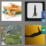 4 pics 1 word 6 letters bungee