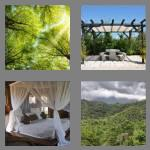 4 pics 1 word 6 letters canopy