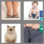4 pics 1 word 6 letters chubby