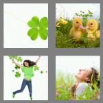 4 pics 1 word 6 letters cloves