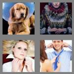 4 pics 1 word 6 letters collar
