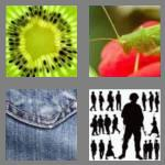 4 pics 1 word 6 letters detail