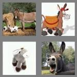 4 pics 1 word 6 letters donkey