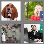 4 pics 1 word 6 letters droopy