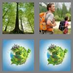 4 pics 1 word 6 letters forest