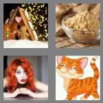 4 pics 1 word 6 letters ginger