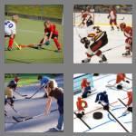4 pics 1 word 6 letters hockey