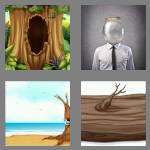 4 pics 1 word 6 letters hollow