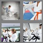 4 pics 1 word 6 letters karate