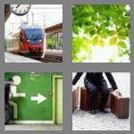 4 pics 1 word 6 letters leaves