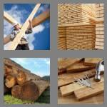 4 pics 1 word 6 letters lumber