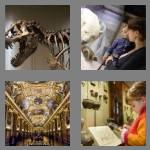 4 pics 1 word 6 letters museum