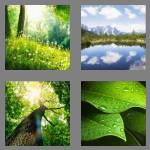 4 pics 1 word 6 letters nature