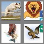 4 pics 1 word 6 letters pounce