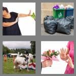 4 pics 1 word 6 letters refuse