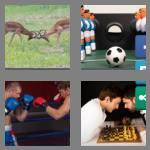 4 pics 1 word 6 letters rivals