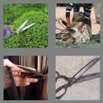 4 pics 1 word 6 letters shears