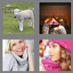 4 pics 1 word 6 letters woolly