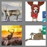 4 pics 1 word 7 letters antlers