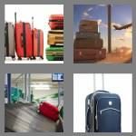 4 pics 1 word 7 letters baggage