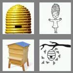 4 pics 1 word 7 letters beehive