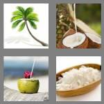 4 pics 1 word 7 letters coconut