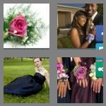 4 pics 1 word 7 letters corsage