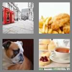 4 pics 1 word 7 letters english