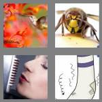 4 pics 1 word 7 letters humming
