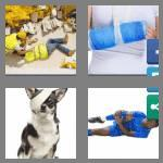 4 pics 1 word 7 letters injured