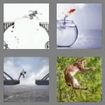 4 pics 1 word 7 letters leaping