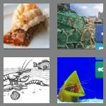 4 pics 1 word 7 letters lobster