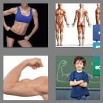 4 pics 1 word 7 letters muscles