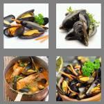 4 pics 1 word 7 letters mussels