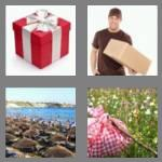 4 pics 1 word 7 letters package