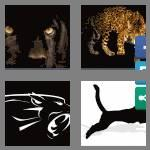 4 pics 1 word 7 letters panther