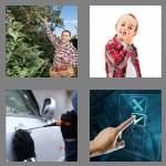 4 pics 1 word 7 letters picking