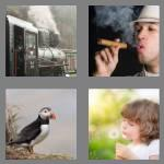 4 pics 1 word 7 letters puffing