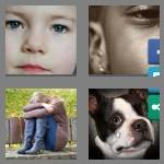 4 pics 1 word 7 letters sadness