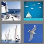4 pics 1 word 7 letters sailing
