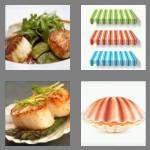 4 pics 1 word 7 letters scallop