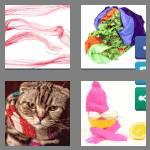 4 pics 1 word 7 letters scarves