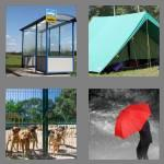 4 pics 1 word 7 letters shelter