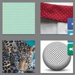 4 pics 1 word 7 letters spotted
