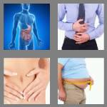 4 pics 1 word 7 letters stomach