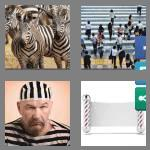 4 pics 1 word 7 letters striped
